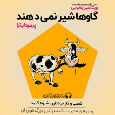 گاو ها شیر نمی دهند